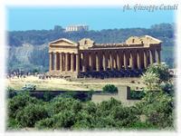Tempio della Concordia Tempio della Concordia incastonato in una fantastica Valle dei Tampli  - Agrigento (2683 clic)