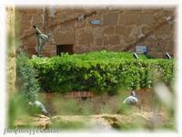 Museo Valle dei Templi Esterno del museo  - Agrigento (2092 clic)