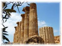 Tempio di Ercole Le colonne del Tempio di Ercole  - Agrigento (2943 clic)