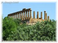 Tempio di Giunone Tempio di Giunone nella Valle dei Templi  - Agrigento (2663 clic)