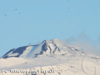 Vulcano Etna Innevato...  - San giovanni la punta (5082 clic)
