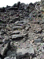 Percorsi naturali.  - Etna (3844 clic)