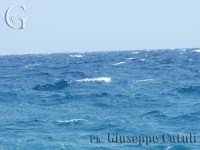 Le movenze del mare...  - Fondachello di mascali (6190 clic)