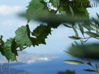 Splendida vista dalla frazione di Dagala del Re  - Santa venerina (2300 clic)