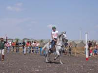 COUNTRY CLUB : CENTRO IPPICO       DI : Emanuele Armao. Bellissimo posto dove si puo' andare a trascorrere delle belle giornate a cavallo oltre tutto il COUNTRY CLUB SI OCCUPA DI CORSI IPPICI ED PREPARAZIONI GARE IPPICHE.   - Licodia eubea (9487 clic)