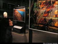 Mostra fotografica in piazza Politeama. La terra vista dal cielo PALERMO Francesco Macaluso