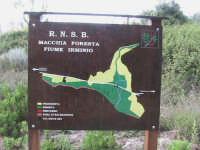 mappa raffigurante la riserva naturale-macchia forestale del fiume irminio  - Donnalucata (3322 clic)