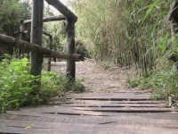 parte del sentiero costituita da un ponticello  in legno  - Donnalucata (1990 clic)