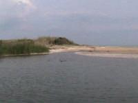 fiume irminio  - Donnalucata (2711 clic)