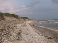 riserva naturale,zona costiera caratterizzata dai ciottoli sparsi sulla riva  - Donnalucata (2620 clic)