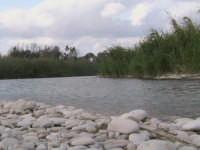 riserva naturale,fiume irminio caratterizzato dai ciottoli che costituiscono il terreno  - Donnalucata (1940 clic)