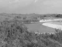 riserva naturale,fiume irminio caratterizzato dai ciottoli che  costituiscono parte del suolo  - Donnalucata (2217 clic)