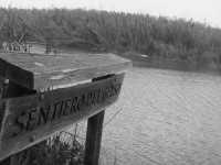 riserva naturale,il sentiero del gelso e uno dei sentieri che da sul fiume  - Donnalucata (2214 clic)