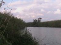 riserva naturale,fiume irminio  - Donnalucata (2007 clic)