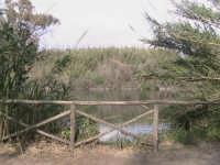 riserva naturale,fiume irminio  - Donnalucata (1993 clic)