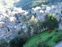 Panorama del paese, sotto il Castello  - Santa lucia del mela (5316 clic)