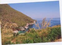 prima cala della riserva naturale dello Zingaro  - Riserva dello zingaro (4229 clic)