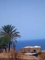 Dammuso, tipica abitazione pantesca  - Pantelleria (2336 clic)