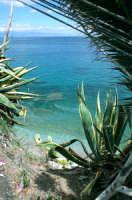 Veduta panoramica della costa di Letojanni.   - Letoianni (6618 clic)