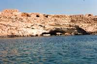Costa di Lampedusa  - Lampedusa (3616 clic)