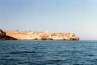 Costa di Lampedusa - capo grecale - capo Levante  - Lampedusa (4419 clic)