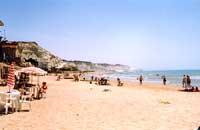 Spiaggia di Realmonte presso Capo Rossello  - Realmonte (10597 clic)