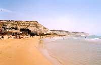 Spiaggia di Realmonte presso Capo Rossello  - Realmonte (10398 clic)