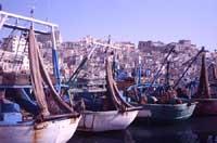 Porto di Sciacca  - Sciacca (9696 clic)