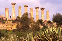 Il Tempio di Ercole  - Valle dei templi (10157 clic)
