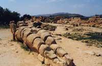 Il Telamone  - Valle dei templi (11920 clic)