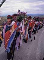 Domenica delle Palme a Butera  - Butera (6624 clic)