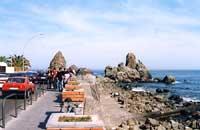 I faraglioni di Acitrezza (o Isole Ciclopi)  - Aci trezza (6544 clic)