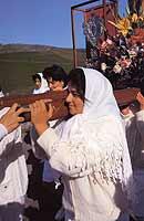 Festa di San Sebastiano a Maniace  - Maniace (7909 clic)