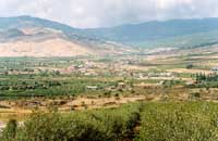 vista panoramica di Maniace alle falde dei nebrodi  - Maniace (5769 clic)