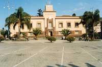 Municipio  - Mascali (5310 clic)