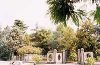 ingresso villa comunale  - Viagrande (8290 clic)