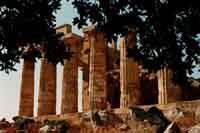 Tempio di Selinunte  - Selinunte (1863 clic)