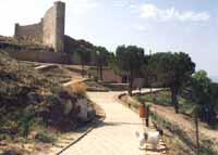 Il Castello  - Assoro (6942 clic)