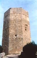 Torre di Federico II di Aragona. E' una torre ottagona di epoca Fridericiana (Federico II di Svevia)  con finestre rimaneggiate in epoca aragonese (primo 400). E' un monumento che sorge  nel centro geodetico della Sicilia  ed ha  somiglianze con castel de  - Enna (6345 clic)