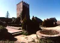 L'interno del Castello di Lombardia  - Enna (3701 clic)