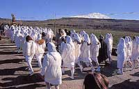 Festa di San Sebastiano a Troina  - Troina (12825 clic)