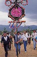 Festa di San Silvestro a Troina  - Troina (7349 clic)