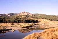 Monti Erei  - Salso (5721 clic)