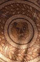 Mosaici  - Villa romana del casale (3939 clic)