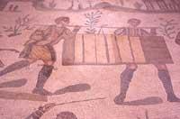 Mosaici  - Villa romana del casale (3960 clic)