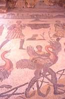Mosaici - Caccia degli uccelli  - Villa romana del casale (5624 clic)