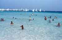 La splendida spiaggia di San Vito  - San vito lo capo (15502 clic)