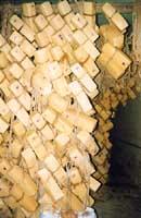 Caciocavallo ragusano  - Ragusa (5221 clic)