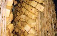 Caciocavallo ragusano  - Ragusa (6524 clic)