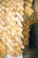 Caciocavallo ragusano  - Ragusa (5238 clic)